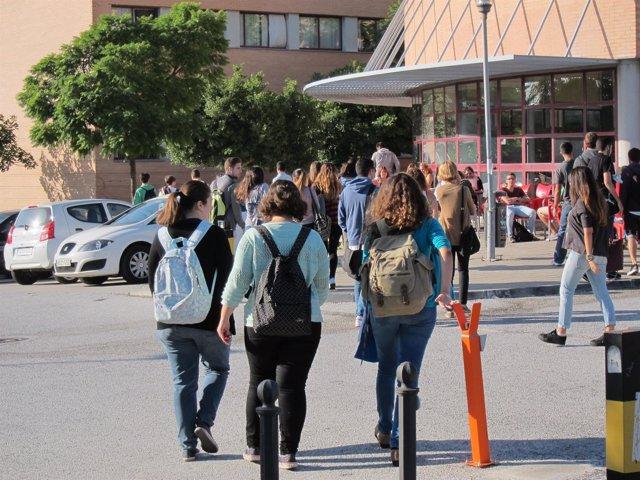 UMA, Universidad, Facultad, Estudiantes, universitarios