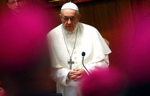 El Papa Francisco en una conferencia con obispos