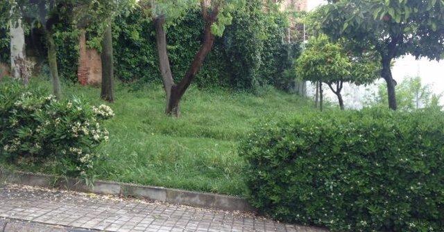 El psoe de cartaya huelva critica que se privatice el for Mantenimiento parques y jardines