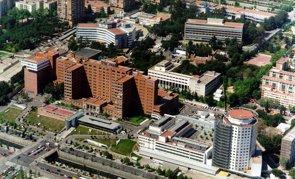 Ensayan usar células madre mesenquimales en lesiones medulares agudas por primera vez en España (HOSPITAL VALL D'HEBRON - Archivo)