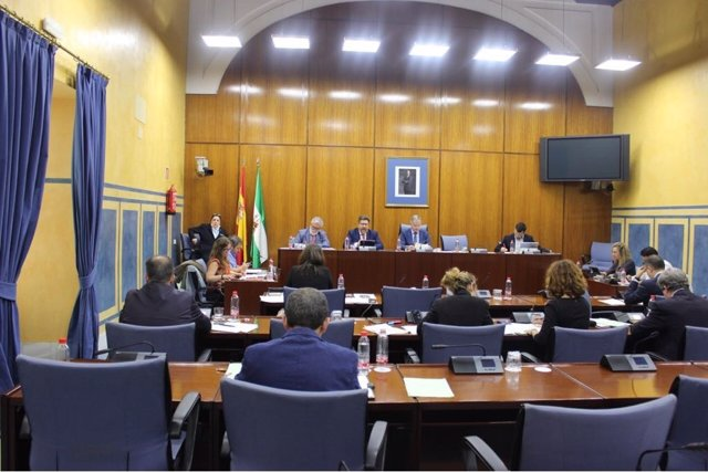 Comisión de Asuntos Europeos del Parlamento de Andalucía