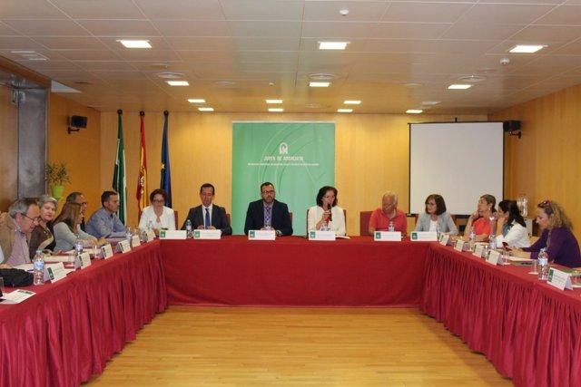 Consejo Provincial de Mayores