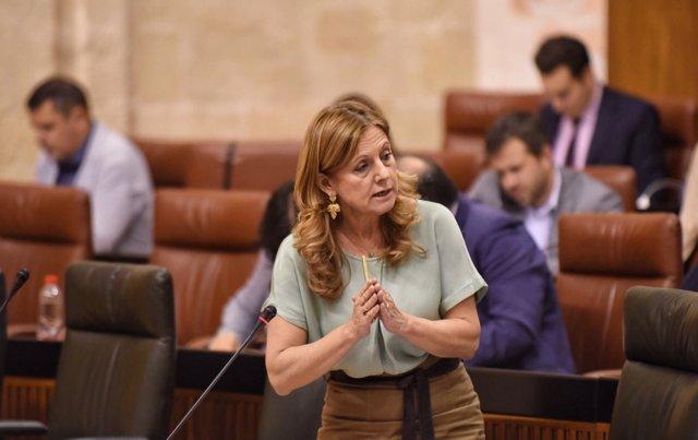 Marina Álvarez en el Pleno del Parlamento