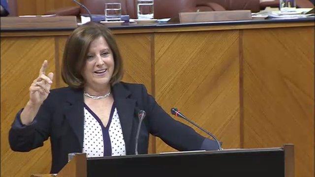 Sánchez Rubio en el Pleno del Parlamento