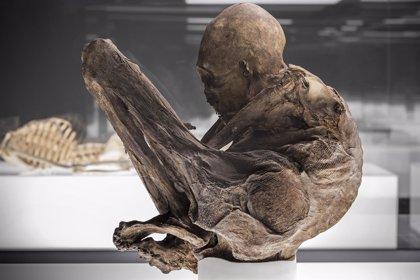 Más de 20.000 personas visitan la exposición de momias 'Athanatos'