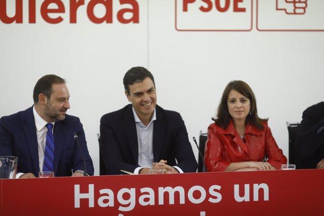 Sánchez presideix una reunió extraordinària de la Comissió Executiva Federal