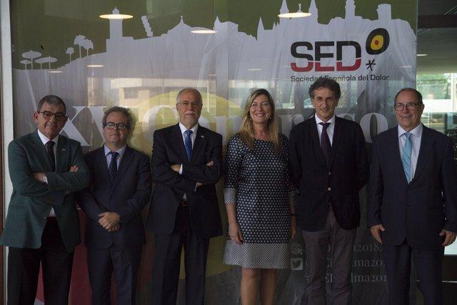 Congreso de la Sociedad Española del Dolor