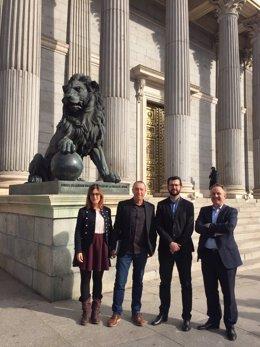 Els quatre diputats de Compromís, enfront dels Lleons del Congrés