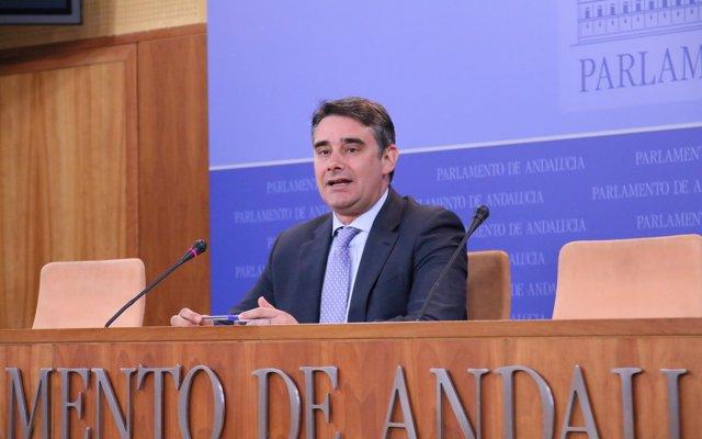 Moreno Yagüe apuesta por potenciar la participación y convertir a Podemos Sevilla en referente de la política municipal