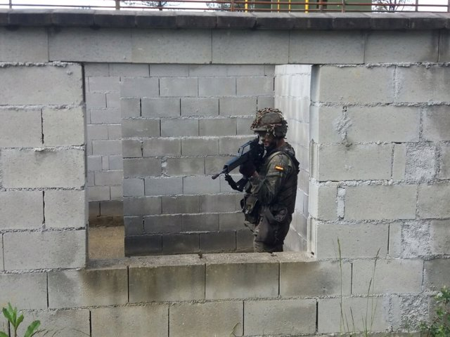 Militar español, Fuerzas Armadas, maniobras militares
