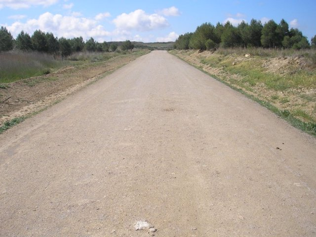 Uno de los caminos rurales de Ejea
