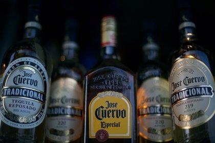 México tendrá a partir de ahora un Día Nacional del Tequila