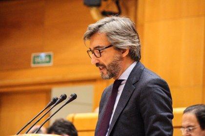 """Oyarzábal (PP) dice que el 155 """"se suspende inmediatamente"""" si Torra nombra, como ha anunciado, un Gobierno legal"""