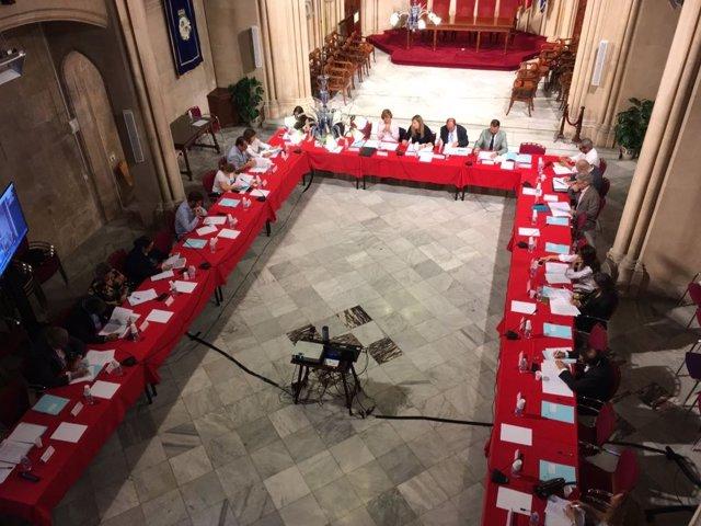 El Consejo de Salud de Baleares reunido en Can Campaner