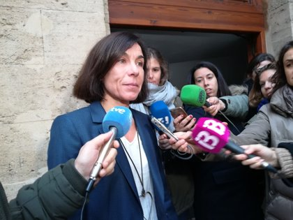 Un funcionario defiende que Carbonell no favoreció a Cursach con el expediente del Megapark