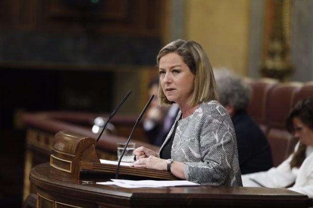 Ana Oramas, de Coalición Canaria, interviene durante la moción de censura