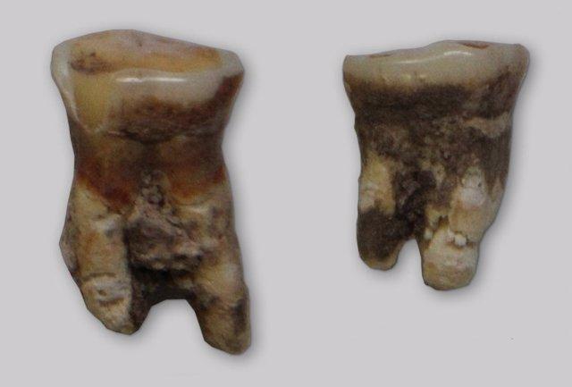 Pruebas de dieta mediterránea en dientes humanos del Mesolítico