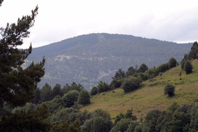 Paisaje de la Sierra Cebollera
