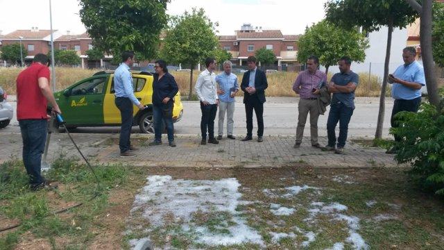 Personal de la Delegación de Parques y Jardines aplican el nuevo método