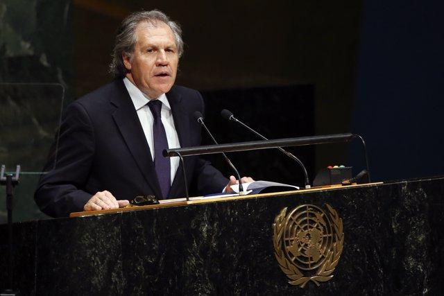 Luis Almagro ante la ONU