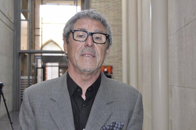El portavoz parlamentario de CHA en las Cortes de Aragón, Gregorio Briz.