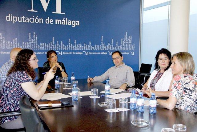 Ana Mata se reúne con fundación harena, caritas y cruz roja plan soledad mayores