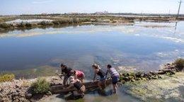 Proyecto de edudación y sensibilización ambiental