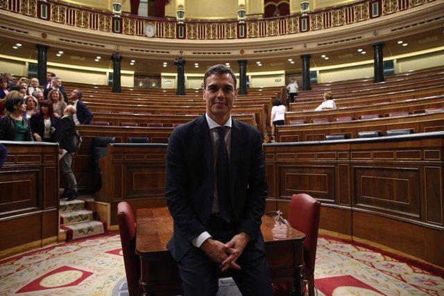 Sánchez posa para los fotógrafos en el Congreso tras ser elegido presidente