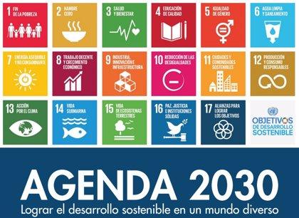 """ONG para el Desarrollo reclaman a Sánchez que asuma """"un liderazgo claro"""" para cumplir la Agenda 2030"""