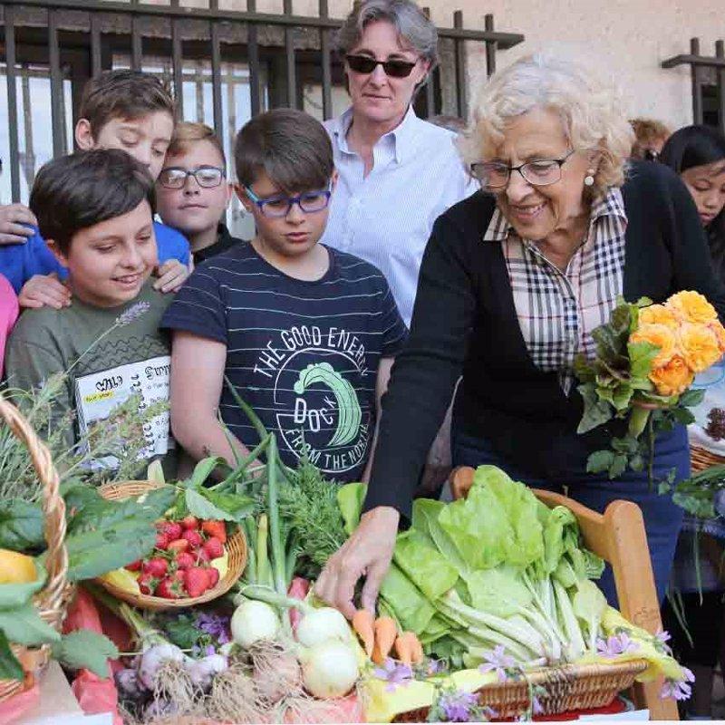 Casetas con hortalizas en la fiesta de huertos buscan que for Casetas de huerto