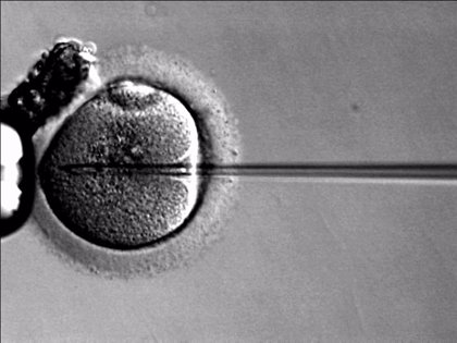 La realidad virtual podría mejorar la tasa de embarazo tras la fecundación 'in vitro'