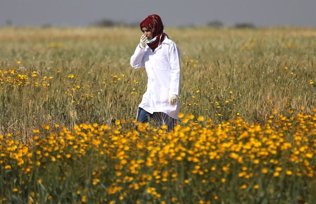 Razan al Nayar, cooperante médica palestina