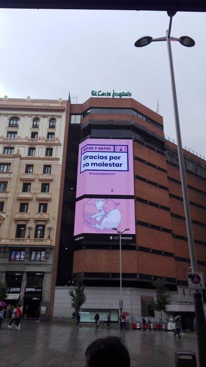 La campaña 'Salimos sin molestar' concienciará contra el ruido del ocio nocturno con mayor incidencia en Centro