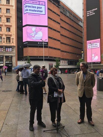 """Ayuntamiento comienza este mes reuniones con vecinos y sector del ocio para """"mejorar"""" la Zona de Protección Acústica"""