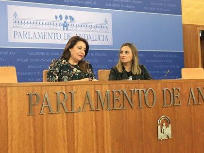 """PP-A: El Gobierno de Sánchez """"no es muy andaluz"""" e incorpora a Montero por """"tacticismo"""""""