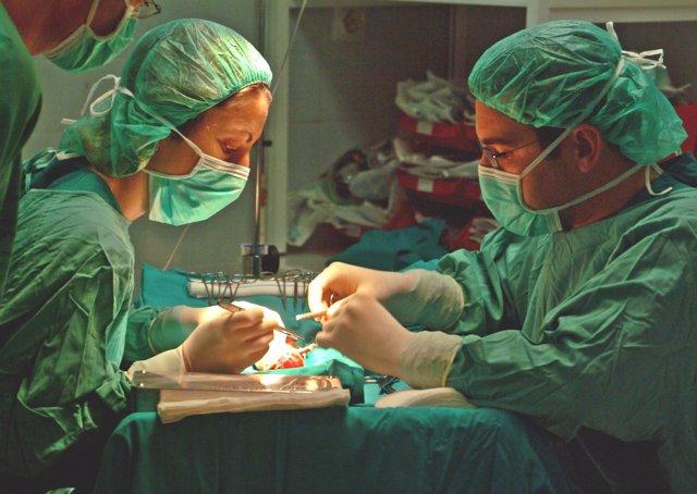Imagen de Archivo. Trasplante renal.
