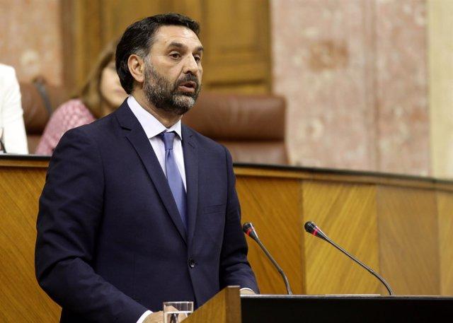 El consejero de Turismo y Deporte, Francisco Javier Fernández, ante el Pleno