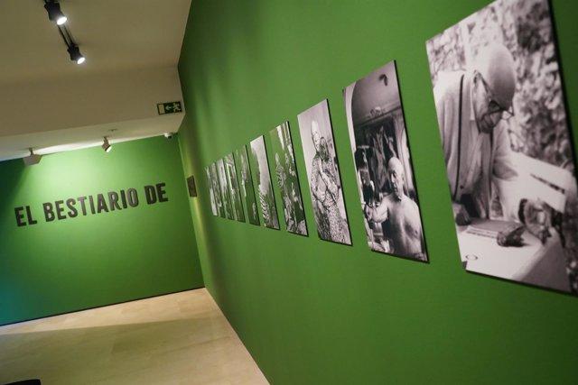 Exposición 'El bestiario' de Picasso