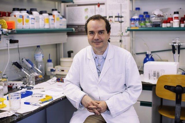 El investigador de la UB, UBNeuro y el Idibell Francisco Ciruela