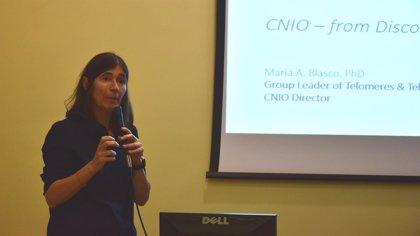 Directora de CNIO señala la importancia de conocer causas moleculares del envejecimiento contra las patologías asociadas