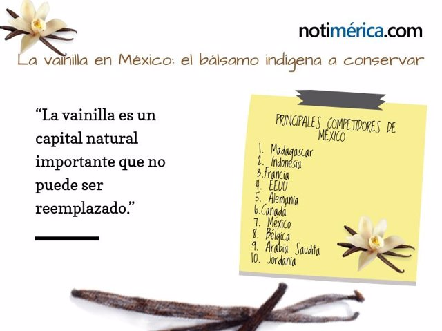 La vainilla y su importancia para México