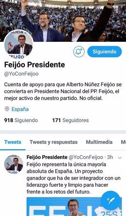 Conta de apoio a Feijóo como presidente do PP