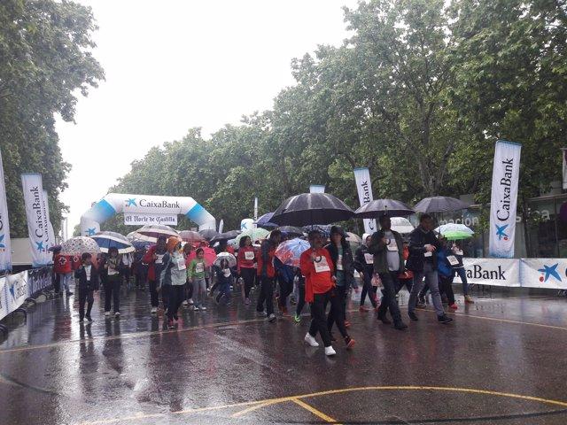Valladolid.- VI Día de la Familia en Marcha