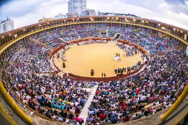 Record en la plaza de toros de Alicante
