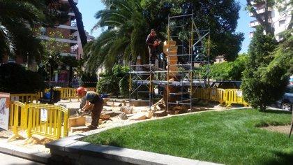 Salvan de la tala a un pino en Guadalajara esculpiendo una escalera de libros