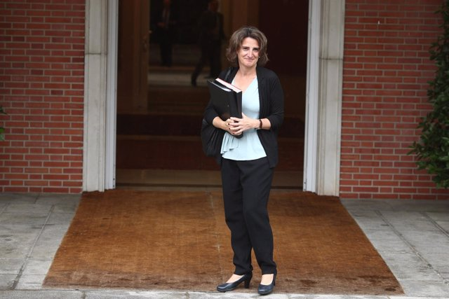 Teresa Ribera, ministra de Transición Ecológica, llega a su primer Consejo