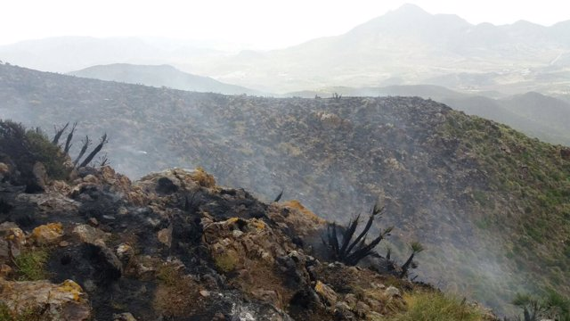 Infoca trabaja en la extinción de un incendio declarado en Níjar