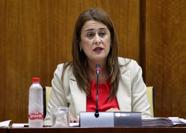 La consejera de Educación, Sonia Gaya, en la Comisión de Educación