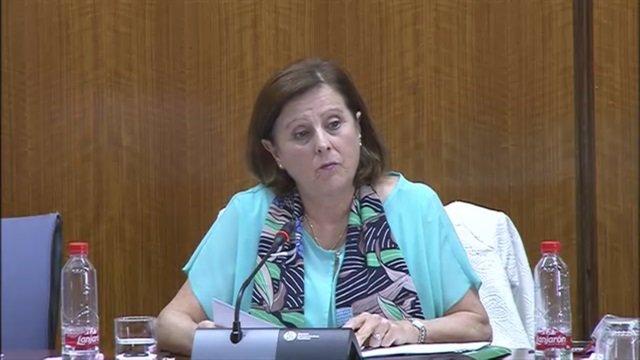 La consejera de Igualdad y Políticas Sociales en comisión parlamentaria