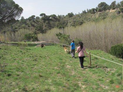 Música, teatro y gastronomía en Navas de Oro (Segovia) para sumar fondos al proyecto Peña del Moro